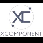 X-Component